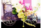 Decoratiuni de nunta Brasov