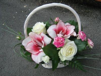 Florarie Brasov